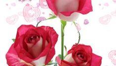 Εικόνες Τοπ για Thank You.! - eikones top