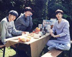 Hyuk, Hakyeon and Hongbin   VIXX