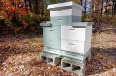Two-queen systems designed to manage and increase honey production have been used extensively, but have not been adopted on a large industrial scale Hive Stand, Langstroth Hive, Bee Hive Plans, Industrial Scales, Raising Bees, Bee Boxes, I Love Bees, Bee Farm, Outside World