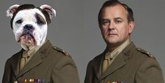 If the Characters in Downton Abbey Were Portrayed by Canine Actors, What Breeds Would They Be? | Dogster