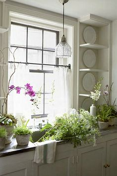 Kitchen window plants by great kitchen window sunlight for growing plants f Beautiful Kitchens, Cool Kitchens, Bright Kitchens, Window Plants, Window Sill, Vintage Light Fixtures, Cottage Kitchens, Cafe Curtains, Interior Inspiration