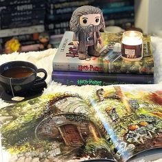 Happy Friday Bookworms! It is rainy and dreary here and my entire house is sick so we are all looking forward to a relaxing and hopefully restful weekend . . My bestie Lisa @lifeinlit got me this Hagrid funko and this Tea with Hagrid candle by @wickandfable Arent they so cute?! The candle smells so good! Like earl grey tea nutmeg and spices  Wick and Fable just released several new scents! @lifeinlit has a rep code so head over there to swipe that up and some candles too! . #hagrid…