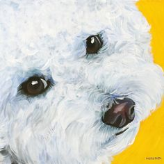 Blair the Bichon Frise Art Print by Melissa Smith Art Pet Portraits