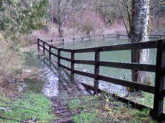 cole creek ranch