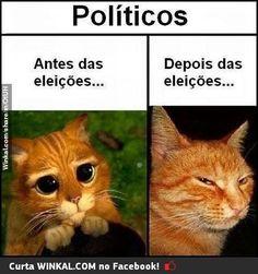 Més de eleições!!