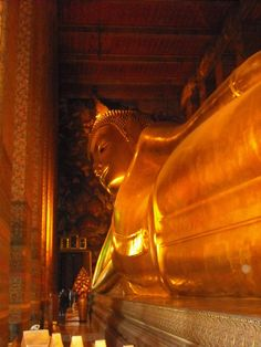 The Reclining Buddha in Bangkok. This thing is HUGE in person