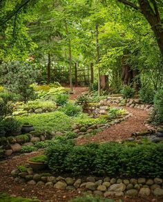 Dale Sievert's amazing shade garden in Wisconsin. Dale Sievert's amazing shade garden in Wisconsin. This image. Unique Garden, Diy Garden, Garden Cottage, Natural Garden, Shade Garden, Dream Garden, Garden Paths, Garden Beds, Backyard Shade