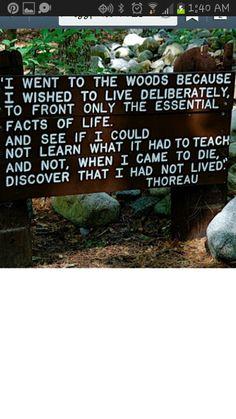 My favorite Henry David Thoreau #quote #lawofattraction