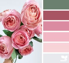 Color Palette - Trend Topic For You 2020 Yarn Color Combinations, Colour Schemes, Design Seeds, World Of Color, Color Of Life, Color Palette Challenge, Flora Design, Colour Pallette, Color Balance