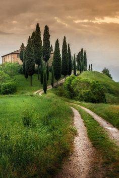 Toscana - Italy | Cipressi Val Dorcia Siena