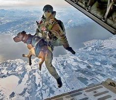 """MILITARY WORKING DOG in action!    Thanks to Benjamin Morish for sharing this stunning image with us.     He also added, I have met and worked with such awesome dogs and their handlers in Iraq and these MWDs are amazing! Imagine a platoon of grunts with 4 strykers arguing over who gets the dog and handler attachments on their vehicle just so they can pet the dog in route to target. lol a dog can brighten the darkest days."""""""