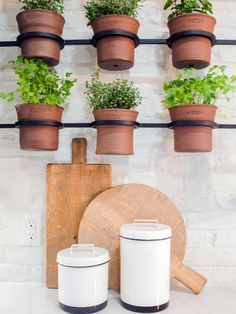 10 Clever Container Gardens We Love From Joanna Gaines Fixer Upper star Joanna Gaines knows how to a Herb Planters, Herb Pots, Indoor Planters, Planter Ideas, Indoor Herbs, Wall Planters, Patio Plants, Plants Indoor, Plant Pots