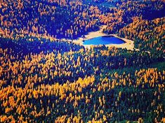 Engadin #engadin #graubünden #lejdestaz #stazersee #muotasmuragl #forest #indiansummer #wald #see #lake #bergsee #herbst #autumn #colors #colours #daytrip #hiking #wandern #dayoff #sunnyday #schweiz #switzerland #stmoritz #pontresina #beautifulday #perfectday #topoftheworld #mountains St Moritz, Indian Summer, Top Of The World, Day Off, Day Trip, Beautiful Day, Sunny Days, Switzerland, City Photo