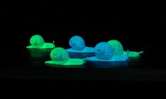 """THE DISCOVERY OF SLOWNESS (Detail) - Authors: Wolfgang Trettnak & Paul O'Leary; 5 phosphorescent snails on a wooden """"racing board"""""""