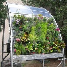 container gardening hydroponic solar vertical garden