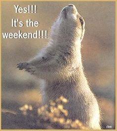 ¡Buen fin de semana! ¡Hasta lunes!   #weekend #findesemana #viernes #friday