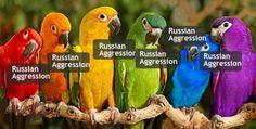 Russian Aggression:  The Fantasy