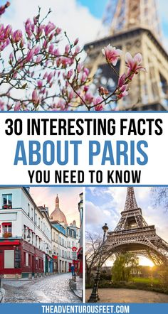 Do you want to learn more about the French capital? Here are the most interesting facts about Paris you probably didn't know.  fun facts about Paris  facts about Paris for kids  amazing facts about Paris France  things to know about Paris  Paris facts for kids  Paris fun facts  Paris catacombs facts  Paris facts for tourists  Eiffel Tower interesting facts  Paris history facts #paristraveltips #funfactsaboutparis #parisfacts Amazing Facts, Interesting Facts, Paris Paris, Paris France, Facts For Kids, Fun Facts, Day Trip From Paris, Paris Travel Tips, Christmas In Paris
