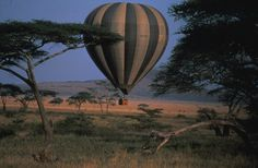andBeyond and Taj Safaris open new jungle safari lodge in India and andBeyond launches hot air ballooning safari in Masai Mara Reserve in Kenya luxury safari lodges Kichwa Tembo from andBeyond Air Ballon, Hot Air Balloon, Balloon Rides, Out Of Africa, Game Reserve, African Safari, Land Scape, Zeppelin, The Great Outdoors