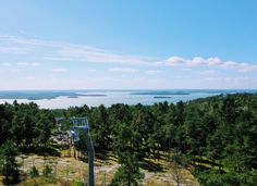 Want to enjoy wildlife AND roller coasters? You have to see #Kolmarden in #Sweden with  http://wanderling.co/guide/a-day-at-kolmarden-wildlife-park-in-sweden?utm_content=buffer54ecc&utm_medium=social&utm_source=pinterest.com&utm_campaign=buffer @MyMeenaLife #ttot #tbex #travelmassive #travel