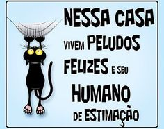 SIMMM ❤️❤️❤️ #petmeupet  #gatofofo  #gato  #amogato  #cachorro  #cachorroétudodebom  #quintafeira