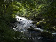 "Tim Pryor - Situated in a quiet valley on Exmoor Brendon Valley is a tranquil place to sit and reflect alongside the riverbank. This image was shot just before the autumn of 2012 with the late day sun. The image is available as a 20"" x 15"" Limited Edition Fine Art Print (2/250). I only use the best fine art paper available which is a natural white Hahnemühle ""William Turner"" mould paper (matt, 310 g/m²). This paper produces excellent image sharpness and brilliant colour grading pro £55.00"