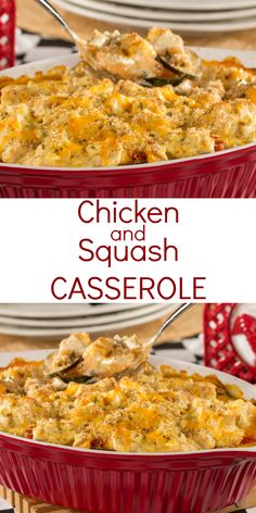 Give your family a hearty dinner they're sure to rave about with our easy recipe for Chicken and Squash Casserole. This casserole is brimmi. Chicken And Yellow Squash Recipe, Chicken Squash, Yellow Squash Recipes, Summer Squash Recipes, Veggie Side Dishes, Food Dishes, Main Dishes, Easy Casserole Recipes, Casserole Dishes