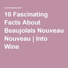 10 Fascinating Facts About Beaujolais Nouveau | Into Wine