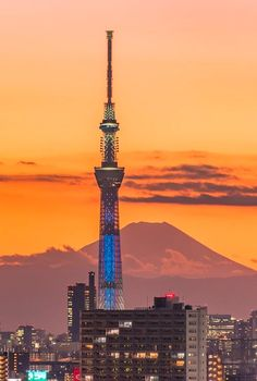 Tokyo Sky Tree & Mount Fuji at Sunset - Tokyo Skytree, Great Places, Beautiful Places, Tokyo Tower, Before Sunrise, Mount Fuji, Japan Photo, Mystery, Landscape Photography