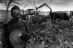 Sebastiao Salgado  No creo que hay ningún otro fotógrafo del mundo que consiga impactarme con CADA fotografía como Sebastiao Salgado. Su serie sobre los garimpeiros brasileños fue mi primer gran impacto fotográfico. MA-ES-TRO