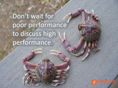 Don't wait for poor performance to discuss high performance. Make 'getting better' normal by scheduling bi-monthlycoaching conversations. The anatomyof performance enhancing co…