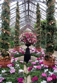 Mediterranean Garden ~ Longwood Gardens  https://www.facebook.com/OurFairfieldHomeAndGarden