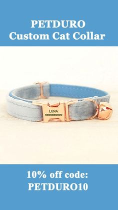 Funny Cute Cats, Silly Cats, Cute Cat Gif, Cool Cats, Custom Cat Collars, Personalized Cat Collars, Baby Kittens, Cats And Kittens, Talking Cat Video