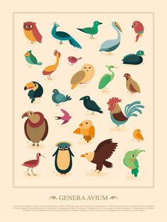 lots of birds. via www.ohhdeer.com