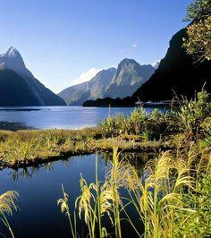 le fjord de Milford Sound, en Nouvelle-Zélande