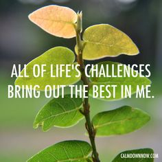 All of life's #challenges bring out the best in me. Inspiring #quotes and #affirmations by Calm Down Now, an empowering mobile app for overcoming anxiety. For iOS: http://cal.ms/1mtzooS For Android: http://cal.ms/NaXUeo