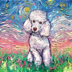 White Poodle Starry Night - Oil Painting - original Art by Aja - inches Palette knife impasto canvas - Hund - Hunde Poodle Toy Branco, White Toy Poodle, Dog Paintings, Original Paintings, Original Art, Portrait Paintings, Abstract Portrait, Painting Abstract, Acrylic Paintings