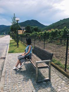 Exploring Austria's Wachau Valley Wachau Valley, Raining Cats And Dogs, Austria, The Row, Dog Cat, Road Trip, Explore, Summer, Travel