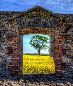 The Colours of Kildare, Ireland