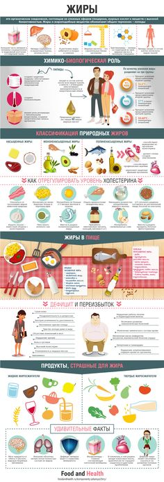Инфографика жиры