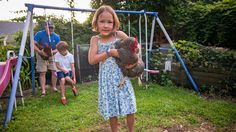 New York City Backyards Welcome Chickens and Bees.