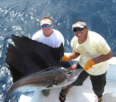 Bucket list- Just imagine me catching this gaint sail fish!