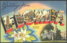 1940s Large Letter Greetings from  Florida State Vintage Postcard