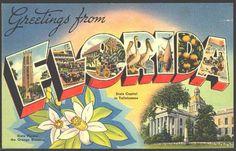 Florida #States #Florida