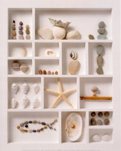 A Fun Idea For Your Beach Treasures. Just need a frame box and some hot glue.