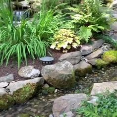 Enjoy this winding stream and waterfall cascading down into a pond! Enjoy this winding stream and waterfall cascading down into a pond! Rock Garden Design, Japanese Garden Design, Japanese Gardens, Japanese Garden Backyard, Japanese Garden Landscape, Koi Pond Design, Small Japanese Garden, Japan Garden, Japanese Water