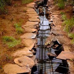 "@limangelica's photo: ""Um ótimo domingo no Cerrado! #sp #brasil #foto #fotografia #cerrado #cultura #photo #photograph #jardim #jardimbotanicosp #água #vida #natureza"""