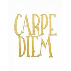 Carpe Diem Canvas Art - Tara Moss (22 x 28)
