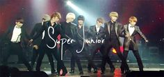 Super Junior<3