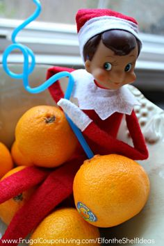 Elf on the Shelf Ideas – Elf Drinks from an Orange plus daily Elf on the Shelf Ideas and FREE Elf Notes youcan pritn now!